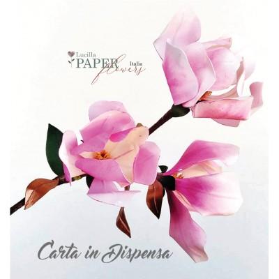 Crea anche TU la Magnolia