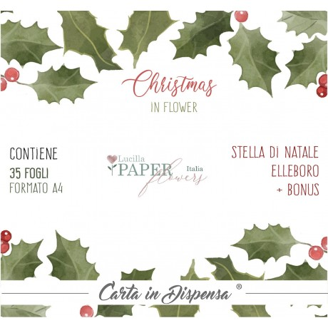 KIT A4 Lucilla Paper Christmas in flower